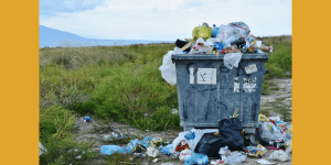Fifty-two groups call on Ontario government to take advantage of once-in-a-lifetime opportunity to fix the Blue Box and eliminate packaging waste