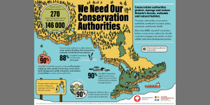 We Need Our Conservation Authorities – Survey & Primer Report