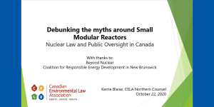 Debunking the Myths of Small Modular Reactors
