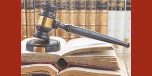 Blog: Why CELA Intervenes in National Test Cases