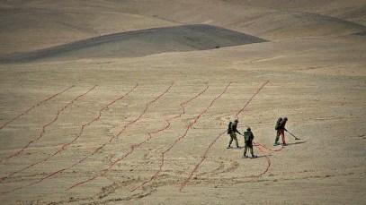 Seeds – Shahar Marcus (Israel), 2012, 5:13