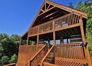 Chalet Village Cabins, Chalet Village Gatlinburg, Chalet Village Vacation Rentals, Condo Rentals in Gatlinburg, smoky mountain hiking trails, Smoky Mountain wildlife, Vacation Homes Decorated for Christmas Gatlinburg Chalet Village, Where to see Black Bears in Gatlinburg, where to see black bears in the Smokies