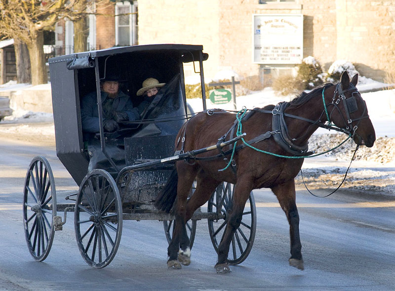 amish-in-town1