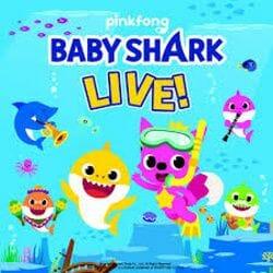 Baby Shark Live | Paramount Theatre