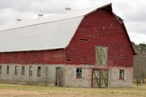 Big Red Barn (3)