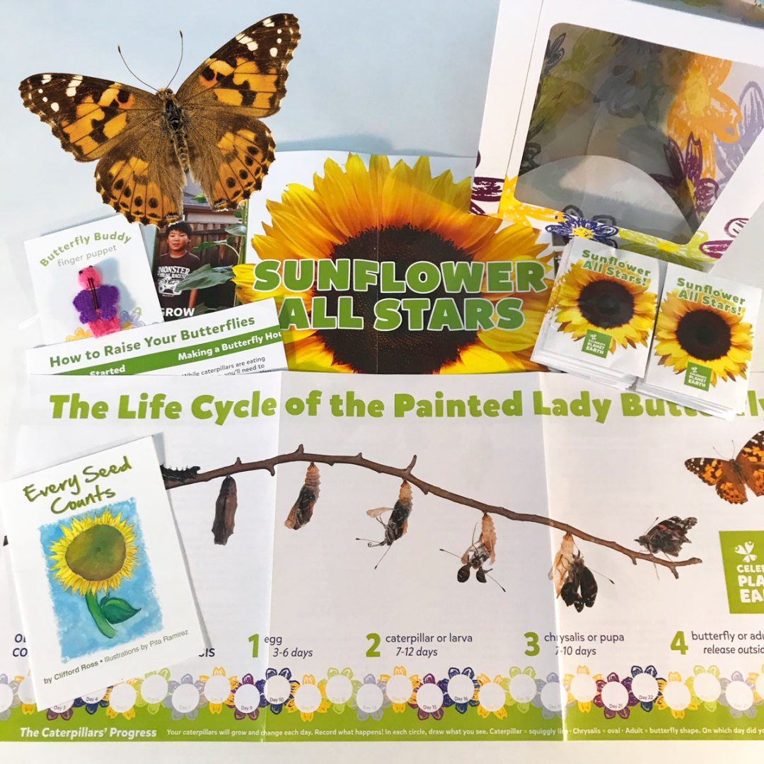 Butterfly & Sunflower Kit