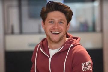 Niall Horan ya es empresario.