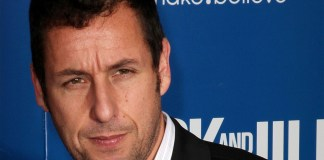 Adam Sandler Earnings