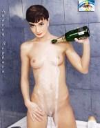 Audrey Hepburn Wet Boobs Porn Fake 001