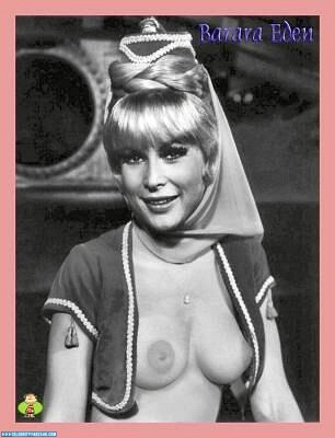 Barbara eden boob measurement VERY NICE