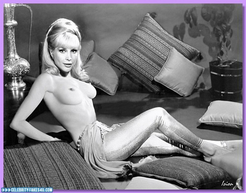 Barbara Eden Fake, I Dream of Jeannie (TV Series), Nude, Series, Sexy Legs, Tits, Very Nice Tits, Porn