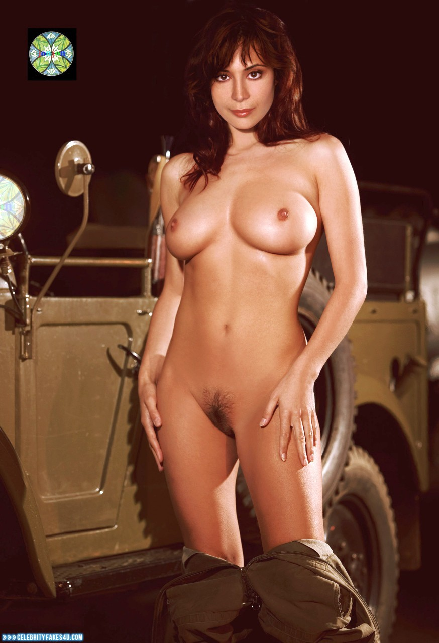 Catherine Bell Breasts