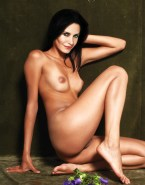 Courteney Cox Nudes Fakes 001
