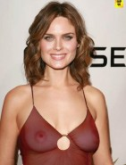 Emily Deschanel Naked Tits Fake