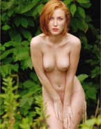 Gillian Anderson Naked Tits 001