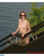 Gillian Anderson Topless Voyeur Fakes 001