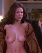Julia Louis Dreyfus Perfect Tits New Adventures Of Old Christine Nsfw Fake 001