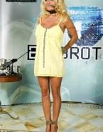 Pamela Anderson Bondage Fakes 001