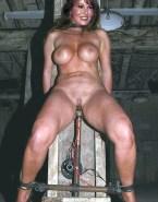 Raquel Welch Bdsm Sex Toy 001
