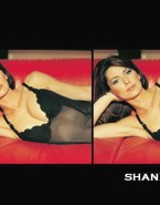 Shania Twain Lingerie Big Boobs Fakes 001