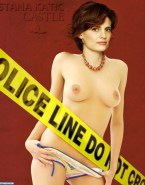 Stana Katic Panties Castle Tv Series Fake 001
