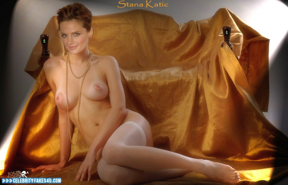 stana-katic-nude-fakes-boobs