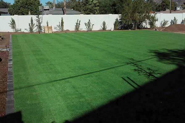 backyard-fake-grass-landscaping