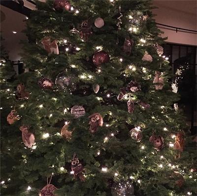Kourtney Kardashian Christmas Card 2014