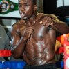 Andre Berto Body Measurements Height Weight Shoe Biceps Size Vital Statistics