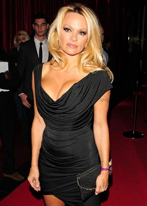 Pamela Anderson Body Measurements