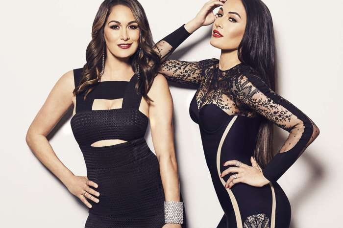 Nikki And Brie Bella Are Pregnant At The Same Time!