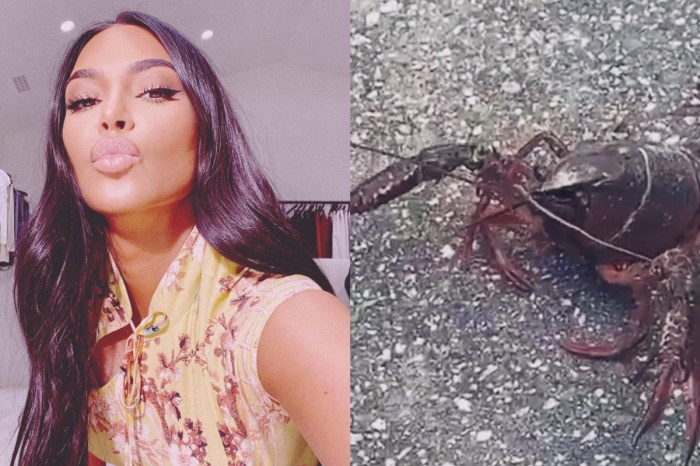 Kim Kardashian Saw A Lobster Walking Down The Street And Now People Think It's The End Of The World