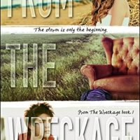 From the Wreckage (From the Wreckage #1) by Michele G. Miller