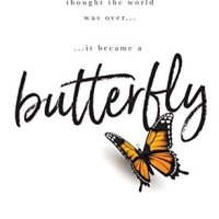 Butterfly by Cambria Hebert