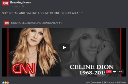 The screenshot from the website that spread Celine Dion's death hoax.