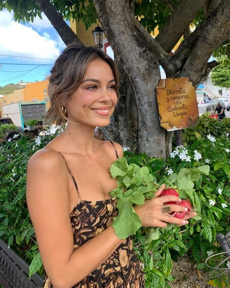 The Baker and the Beauty Noa Hamilton actress Nathalie Kelley's net worth is estimated to be $600,000.
