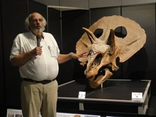 トリケラトプスの頭骨