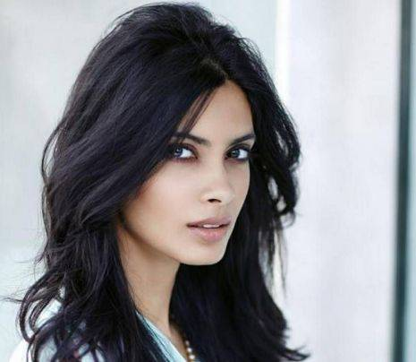 Diana Penty Height, Weight, Age, Biography, Wiki, Boyfriend, Family