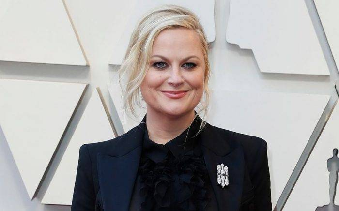 Amy Poehler Lifestyle, Wiki, Net Worth, Income, Salary, House, Cars, Favorites, Affairs, Awards, Family, Facts & Biography