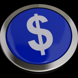 Dollar Symbol Button In Blue Showing Money Or Investment