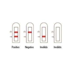 Resultados de teste rápido: positivo (duas linhas), negativo (uma linha no C), inválido (uma linha no T) e inválido (nenhuma linha)