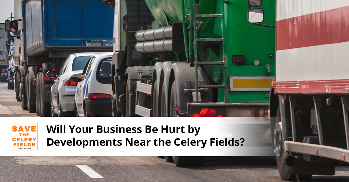 Will Your Business be Hurt By Developments Near the Celery Fields