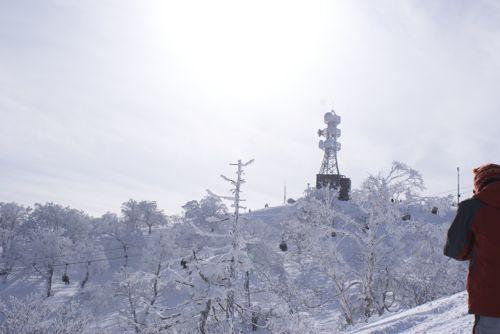 nozawa2010-2.jpg
