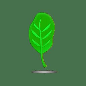 LeafIcon