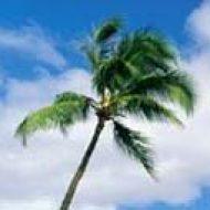 Celestial Beach