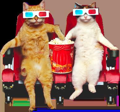 Podemos levar lanchinho pro cinema!