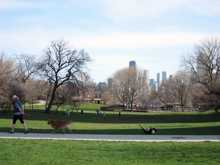 The park coming alive (Chicago's Lincoln Park), © 2013 Celia Her City