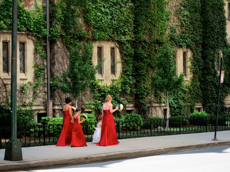 Bridesmaids, © 2013 Celia Her City