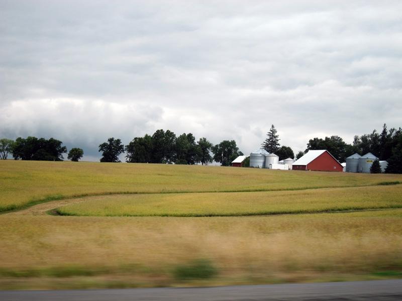 Spruce (Iowa), © 2013 Celia Her City