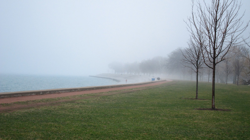 The scheme of things: trees by Lake Michigan on a foggy spring day